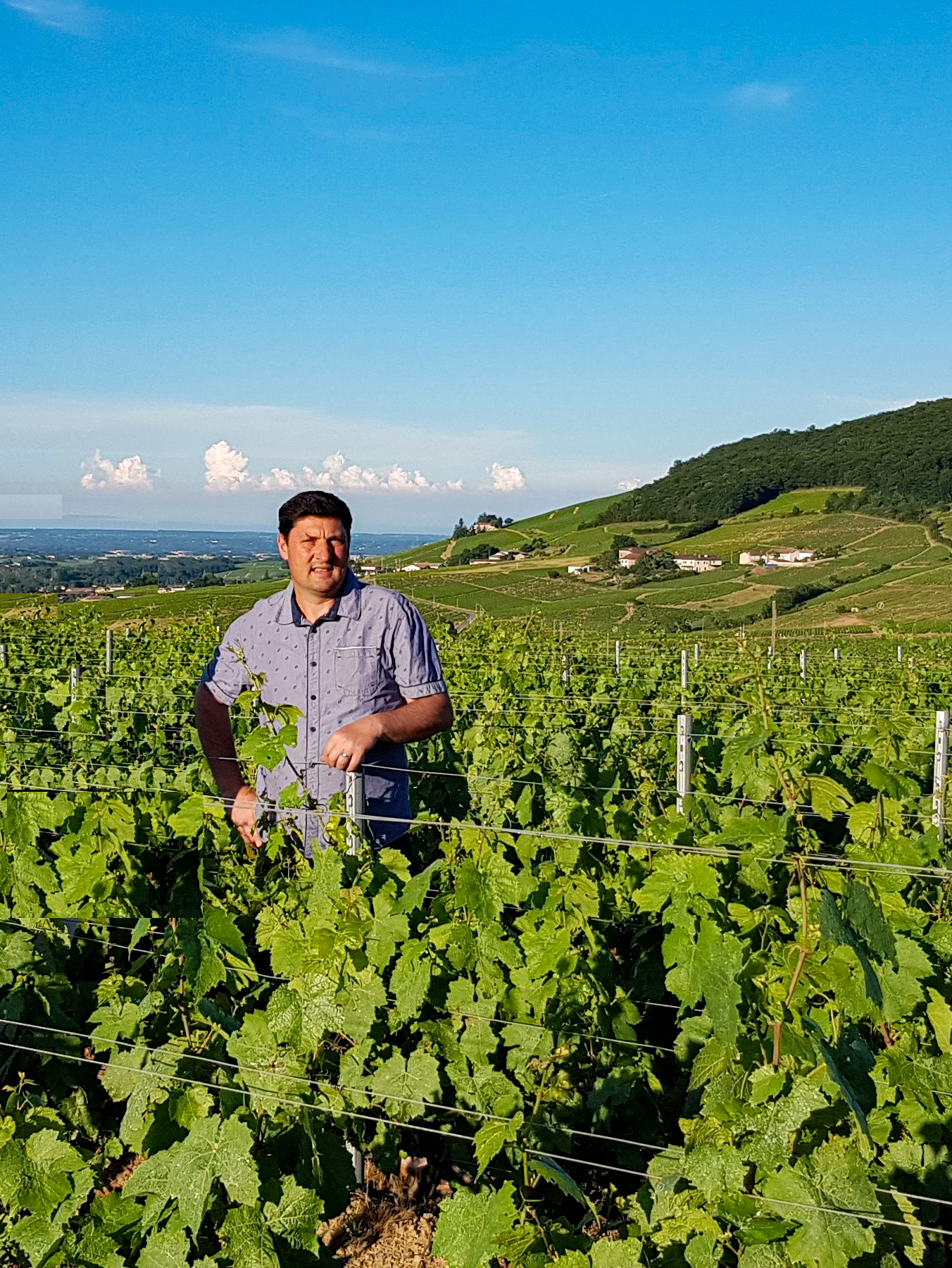 Cyrille DUVERNAY - Brouilly