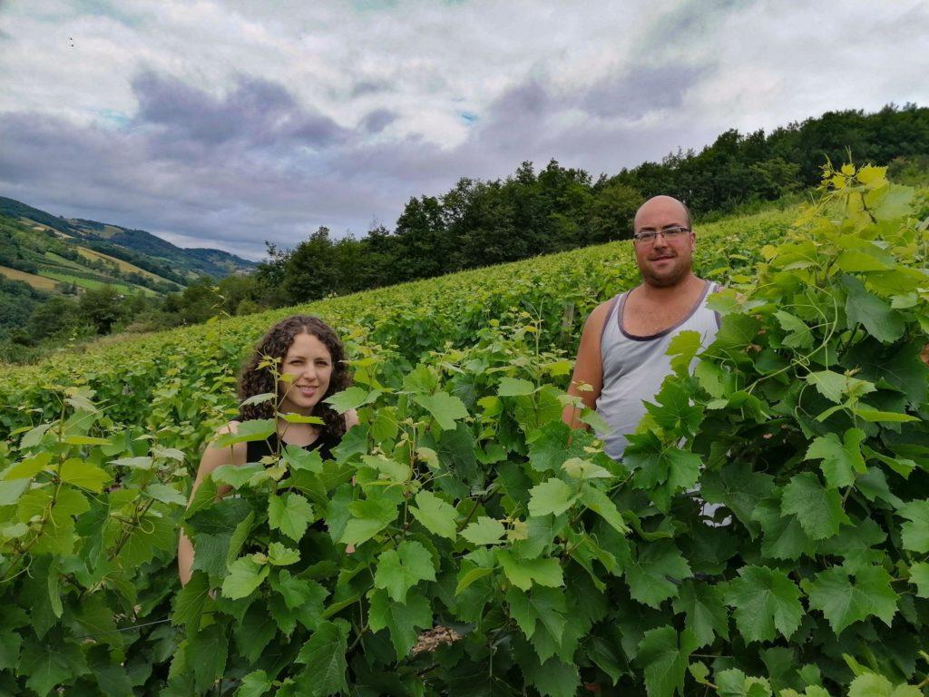 A la vigne #juillet, Deux vignerons