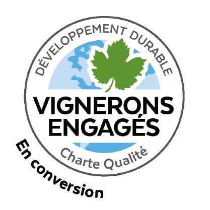 Logo VDD certification