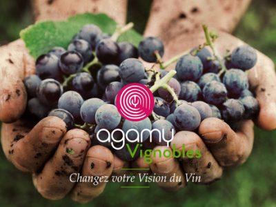 Agamy-Vignoble